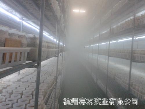 食用菌超声波加湿器
